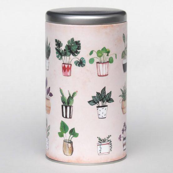 Grande boîte Belles plantes